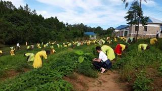 Tanzania_jordbruk